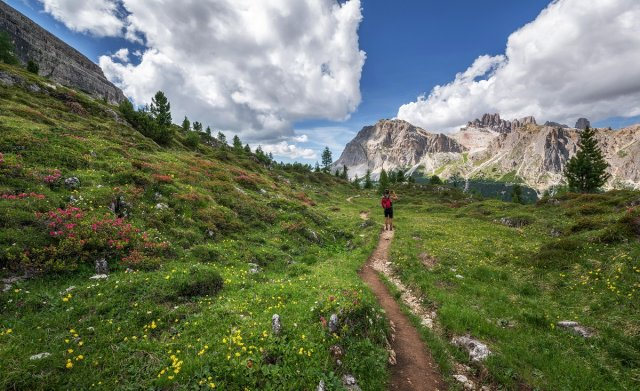 The rise of trail running