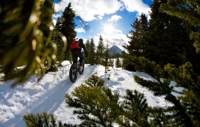 Adventure Snowcations